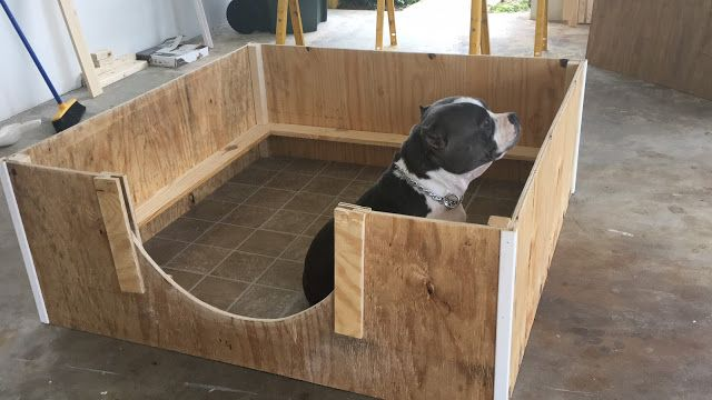 How To Create A Quick And Inexpensive Whelping Box Bully